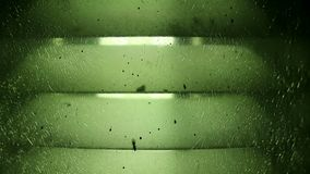 Groen knapperde de lichte en vliegende mier van de glaslamp stock footage