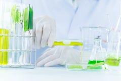 Groen kruiden de ontdekkingsvaccin van het geneeskundeonderzoek bij wetenschapslaboratorium royalty-vrije stock foto's
