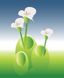 Groen Land 02 Stock Afbeeldingen