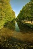 Groen landschap Stock Afbeeldingen
