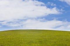 Groen landschap Stock Afbeelding