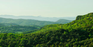 Groen landschap Royalty-vrije Stock Afbeelding