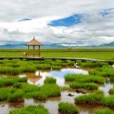 Groen landschap met geïsoleerdi summerhouse Stock Afbeelding