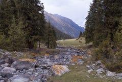 Groen landschap met heuvels, bomen, rotsen en bergen royalty-vrije stock fotografie