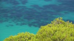 Groen lichtpijnboom en turkoois water, schitterend landschap, Griekenland stock videobeelden