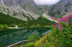 Groen meer in Hoge Tatras slowakije Royalty-vrije Stock Afbeelding