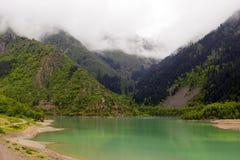 Groen meer. Regen. Mist. stock afbeelding
