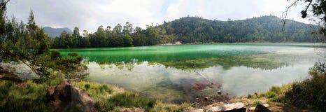 Groen meerpanorama royalty-vrije stock afbeeldingen