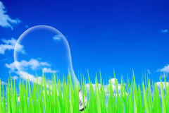 Groen met blauwe hemel en gloeilamp Stock Fotografie