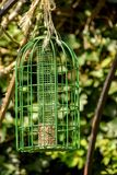Groen Metaal Birdfeeder stock fotografie