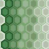 Groen naadloos behang Stock Afbeelding