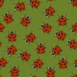 Groen naadloos patroon met lieveheersbeestjes Vector illustratie royalty-vrije illustratie