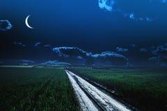 Groen nachtgebied Sterhemel Stock Afbeeldingen