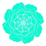 Groen nam organische installatie van het Bloem de vectorpictogram toe Hand getrokken huwelijksaffiche of prentbriefkaar De bloeme royalty-vrije illustratie
