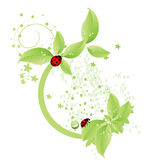 Groen ontwerp Royalty-vrije Stock Afbeeldingen