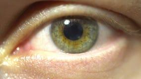 Groen oog extreem close-up van en iris en leerling die uitzetten aangaan Zeer fijn gedetailleerd, gemodelleerd van echt menselijk stock videobeelden