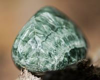 Groen opgepoetst Seraphinite-specimen van Oostelijk Siberië in Rusland op vezelige boomschors in de bosgemkwaliteit clinochlore stock foto