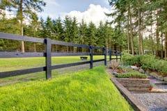 Groen paardlandbouwbedrijf pastue met stappen in het bos. stock foto