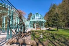 Groen park in Borjomi, Georgië Stock Afbeeldingen