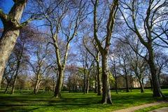 Groen park, Londen, het UK stock fotografie