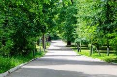 Groen park met steeg royalty-vrije stock afbeeldingen