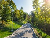 Groen Park met treden in Chisinau moldova stock foto's