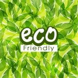 Groen patroon voor Vriendschappelijke Eco Royalty-vrije Stock Foto