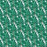 Groen pijnboompatroon op transparante achtergrond Royalty-vrije Stock Afbeeldingen