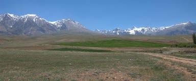 Groen plateau en rotsachtige bergen Royalty-vrije Stock Afbeeldingen