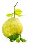 Groen pompelmoesfruit met kleine kalk op witte Achtergrond Stock Afbeeldingen