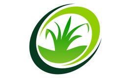 Groen Project Royalty-vrije Stock Afbeeldingen