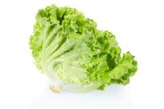 Groen saladehoofd Stock Afbeelding