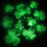 Groen schitter klavers. Royalty-vrije Stock Afbeelding