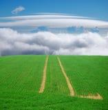 Groen schoolreis aan hemel Stock Afbeeldingen