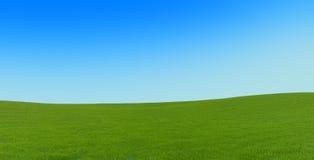 Groen tapijt op de heuvels Stock Foto's