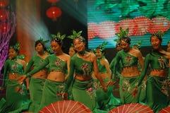 Groen theemeisje dans-2007 Jiangxi-het Feest van het de Lentefestival Royalty-vrije Stock Foto's