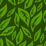 Groen theepatroon Royalty-vrije Stock Afbeeldingen