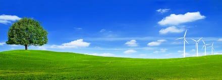 Groen toneel de meningsbehang van het de zomerlandschap Mooi behang Solitaire boom op grasrijke heuvel en blauwe hemel met wolken stock afbeelding