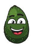 Groen tropisch avocadofruit Stock Afbeeldingen