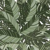 Groen tropisch bladeren naadloos patroon Vector illustratie Exotische banaan en monsterabladerenachtergrond voor stof, art. vector illustratie