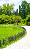 Groen tropisch Park Stock Fotografie