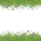 Groen tuinframe royalty-vrije illustratie