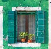Groen venster royalty-vrije stock fotografie