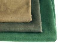 Groen vlas op een witte achtergrond Stock Afbeeldingen