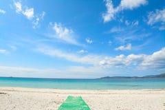 Groen voetpad aan het strand stock afbeelding