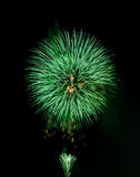 Groen vuurwerk stock afbeelding