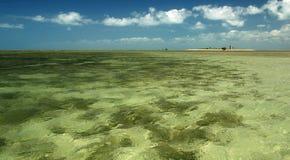 Groen water Stock Afbeelding