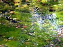 Groen water royalty-vrije stock fotografie