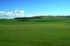 Groen Weiland in Engeland Stock Fotografie