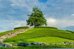 Groen weinig planeet met gras op zijn oppervlakte en mensenverblijf t Royalty-vrije Stock Foto's